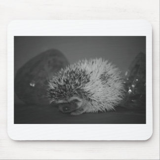 Hedgehog Baby with Easter Egg in Black and White Mouse Pad