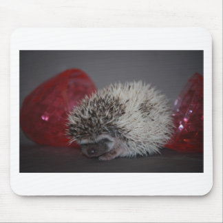 Hedgehog Baby with Easter Egg Mouse Pad