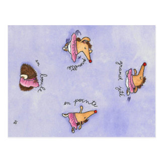 HEDGEHOG BALLET postcard by Nicole Janes