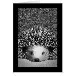 Hedgehog Blank Notecard Greeting Cards