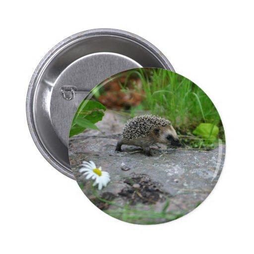 Hedgehog button - customizable