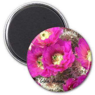 Hedgehog Cactus, Globe, Arizona Magnet