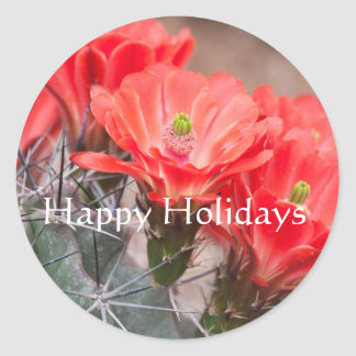 Hedgehog Cactus ,Happy Holidays Classic Round Sticker