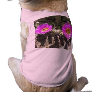 Hedgehog Cactus Shirt