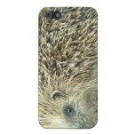 Hedgehog Care iPhone 4 Case