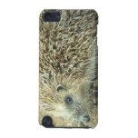 Hedgehog Care iTouch Case iPod Touch (5th Generation) Covers