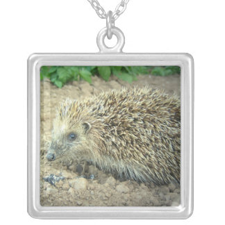 Hedgehog Care Necklace