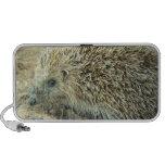 Hedgehog Care Portable Speakers