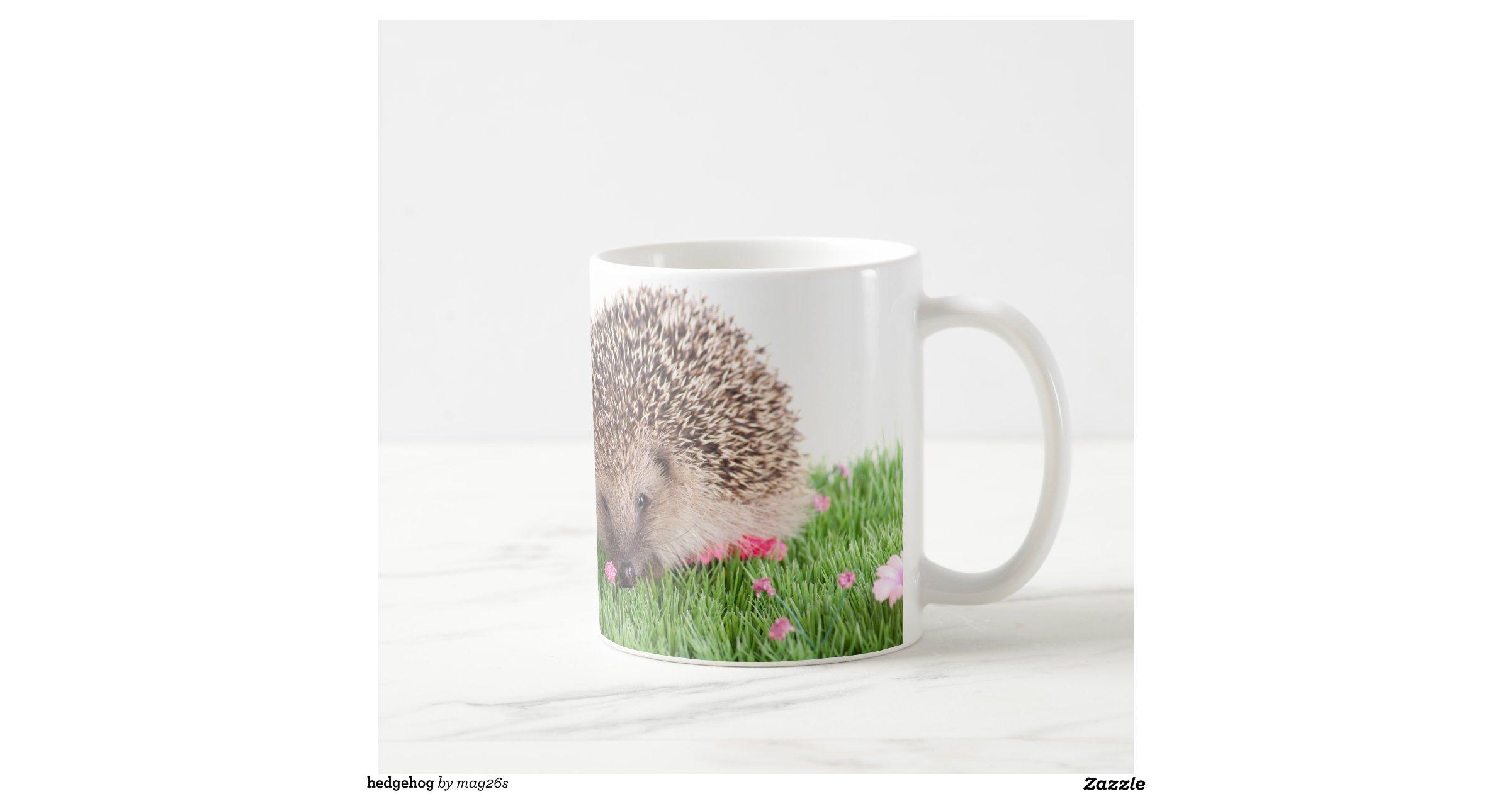 Image Result For Hedgehog Coffee Mugs