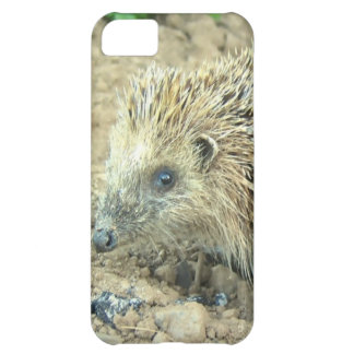 Hedgehog Cover For iPhone 5C