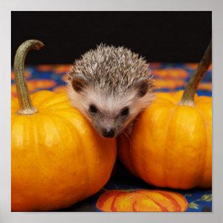 Hedgehog Halloween Greetings Poster