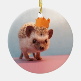 Hedgehog Happiness Ceramic Ornament