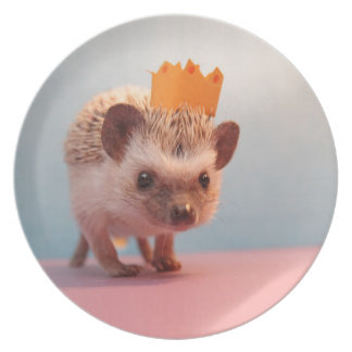 Hedgehog Happiness Party Plates