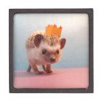Hedgehog Happiness Premium Jewelry Boxes