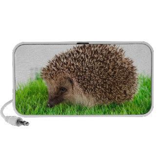 hedgehog, haut-parleurs iPod