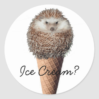 Hedgehog Ice Cream Classic Round Sticker