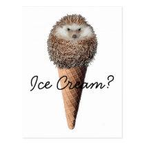 Hedgehog Ice Cream Postcard