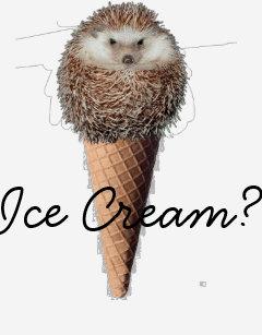 Image result for zazzle hedgehog whisperer
