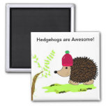 Hedgehog in a Red Toque 2 Inch Square Magnet