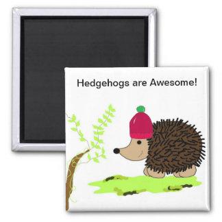 Hedgehog in a Red Toque Refrigerator Magnets