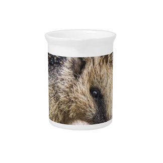 Hedgehog in autumn leaves beverage pitcher