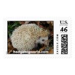 hedgehog in leaves stamp