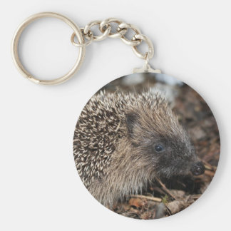 Hedgehog Key Chain