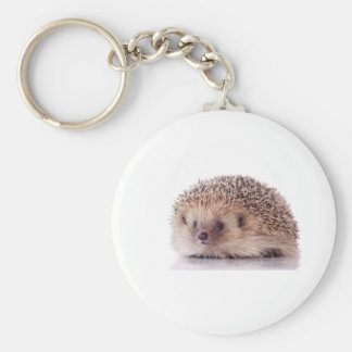 Hedgehog, Keychain
