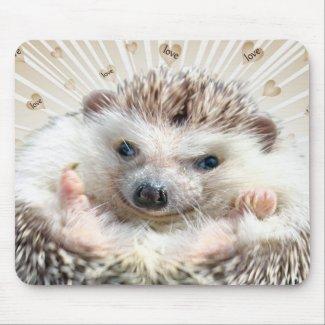 Hedgehog Love Mousepad mousepad
