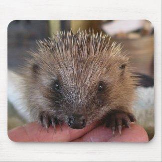 Hedgehog Mousepad mousepad