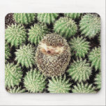 "Hedgehog Mousepad<br><div class=""desc"">Adorable Mousepad For The Hedgehog Lover In You!</div>"