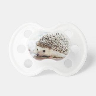 Hedgehog Pacifier