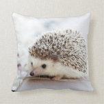 Hedgehog Pillow