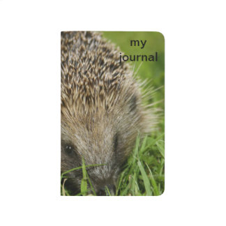 Hedgehog Pocket Journal