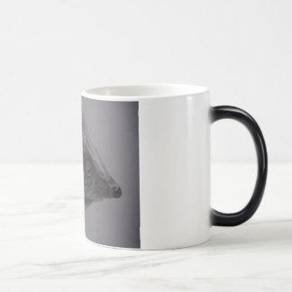 Hedgehog Products Magic Mug