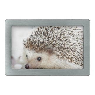 Hedgehog Rectangular Belt Buckle