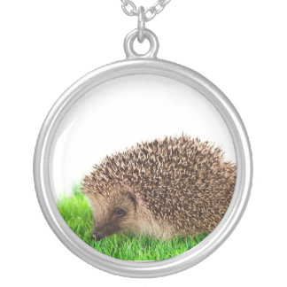 hedgehog, silver plated necklace