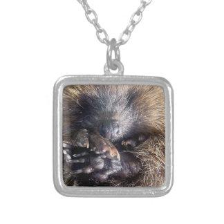 Hedgehog snuggle pendant