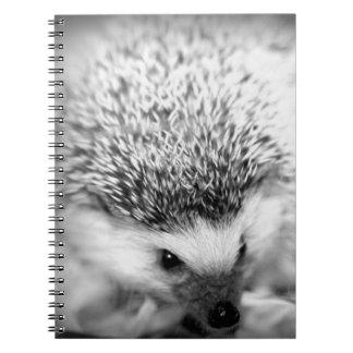hedgehog spiral note books