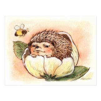 Hedgehog Spring Flower Baby Post Cards