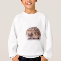 Hedgehog, Sweatshirt