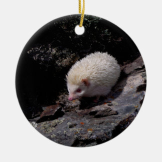 Hedgehog taking a stroll ceramic ornament