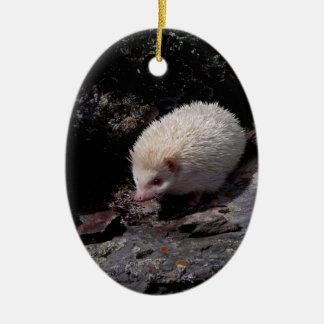 Hedgehog taking a stroll ceramic ornament