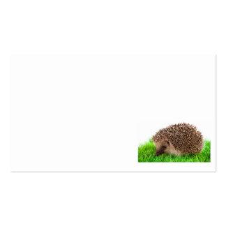 hedgehog tarjetas de visita