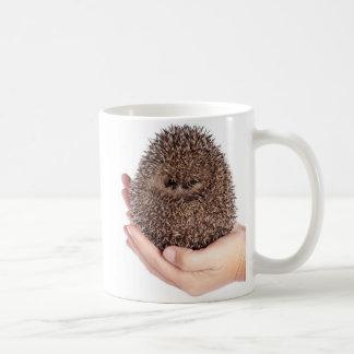 hedgehog taza de café