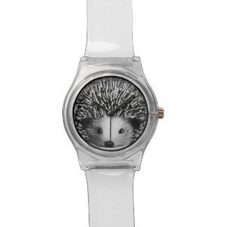 Hedgehog Watch (Clear Band)