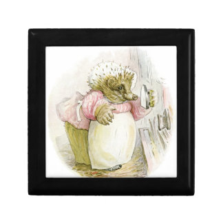 Hedgehog with Iron Mrs Tiggy-Winkle Jewelry Boxes