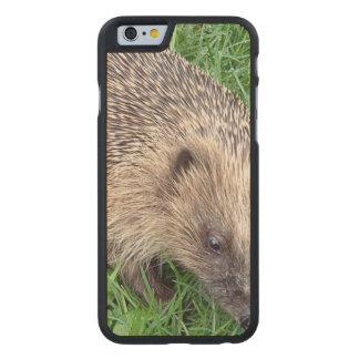 Hedgehog Carved® Maple iPhone 6 Slim Case