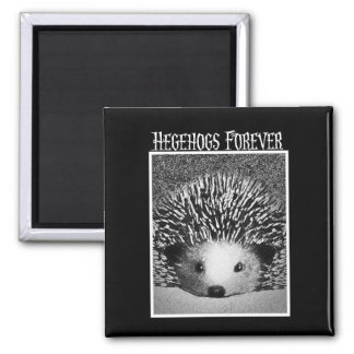 Hedgehogs Forever Square Magnet