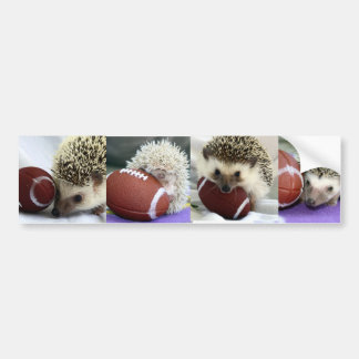 Hedgehogs Playing Football Bumper Sticker